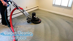 Carpet Cleaning Bickerton