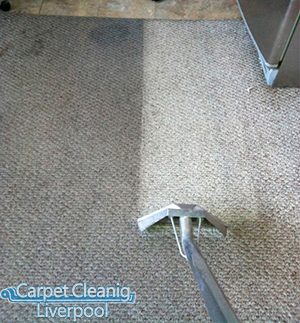 Carpet Cleaning Allostock