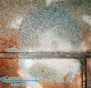 Carpet Cleaning Handforth SK9