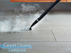 Carpet Cleaning Great Sutton CH66