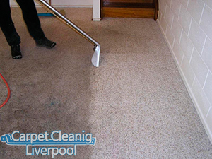 Carpet Cleaning Dingle L8