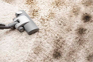 Carpet Cleaning Withnell PR6