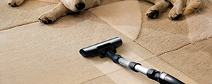 Carpet Cleaning Feniscowles BB2