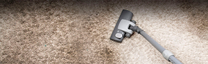 Carpet Cleaning Tunstall