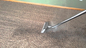 Carpet Cleaning Read BB12