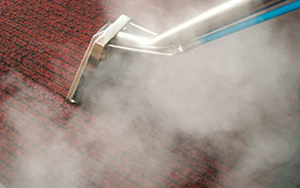 Carpet Cleaning Eccleston WA10